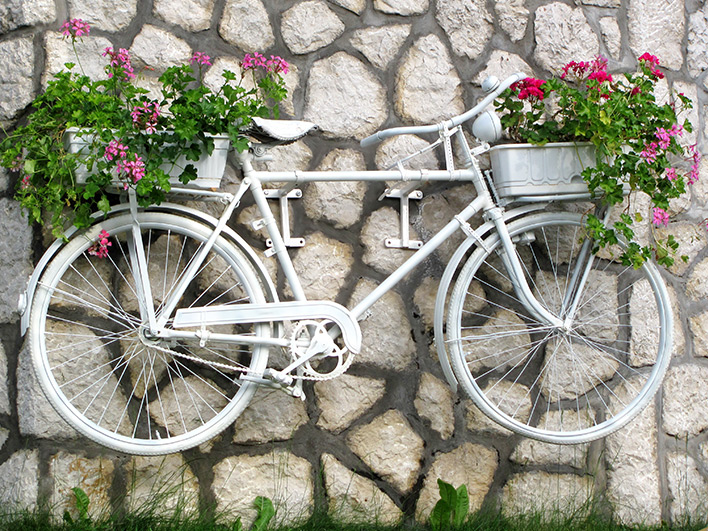 Bike Hanging On Wall With Flowers